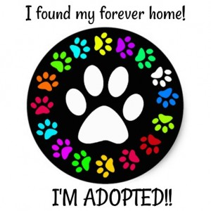 Adopted forever