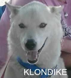 klondike18